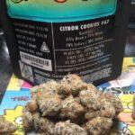 Buy-Citron-Cookies-Jungleboys.jpg