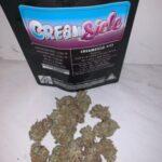 Cream-Sick-600×750-300×300-1.jpg